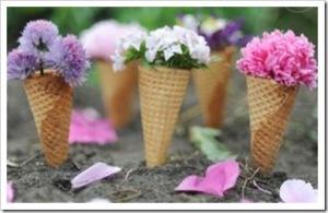 Spring Blog Pic